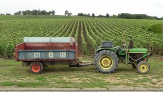 Tractor parked in the vineyards
