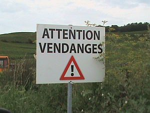 Warning-Vendanges300
