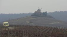 Moulin-across-pruned-vines225