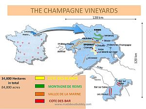 Champagne-vineyards-map300