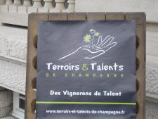 Tasting grower Champagne - Terriors et Talents